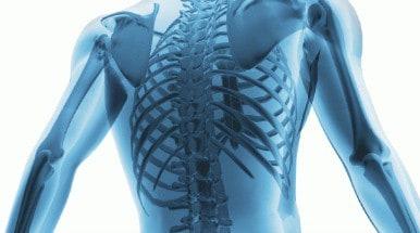 spine-featured