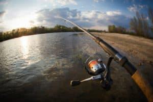 Stream Fishing - Bradford