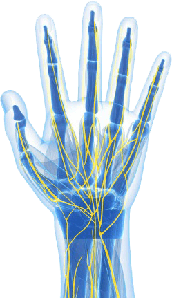 Nerve Center hand render