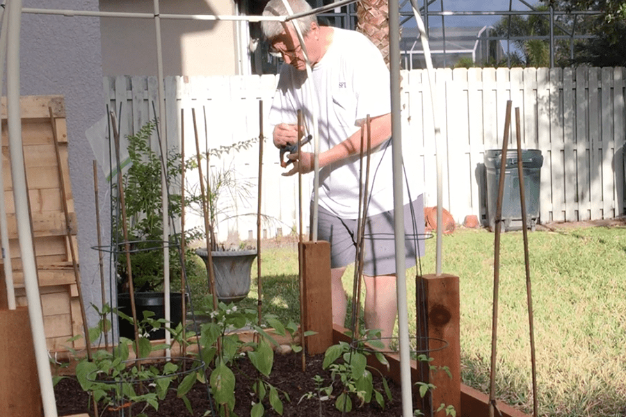 Patient enjoys gardening again with no pain after his Laminectomy